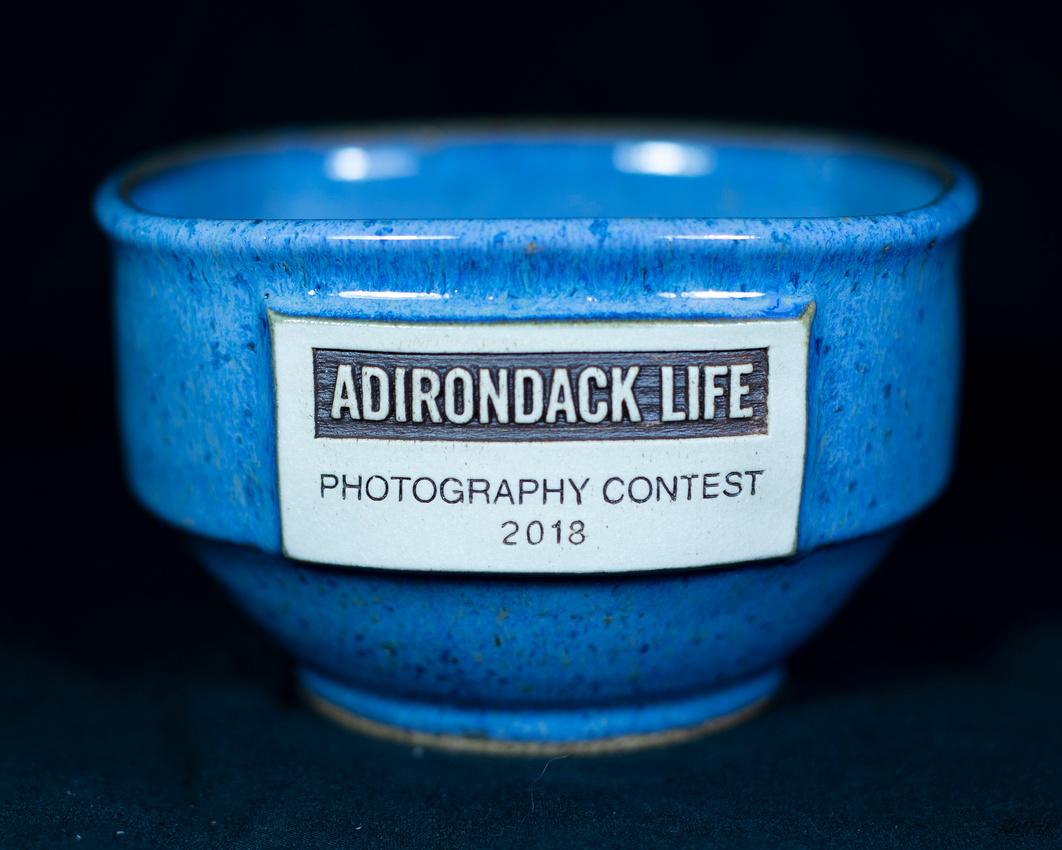 130/365 My prize for second place Adirondack Life Magazine photo