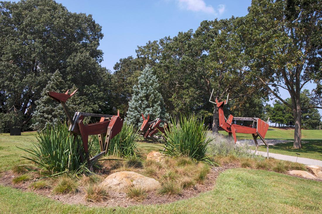 268/365 Deer!