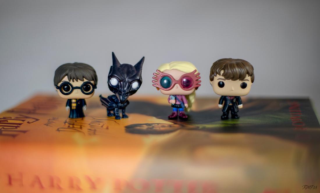 338/365 4 days of Harry Potter