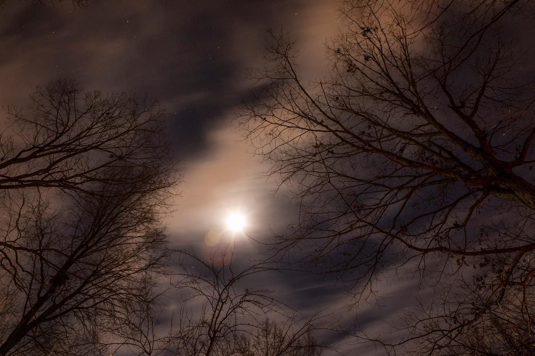 352/365 Night sky