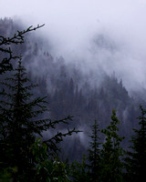 Misty foggy mountainside