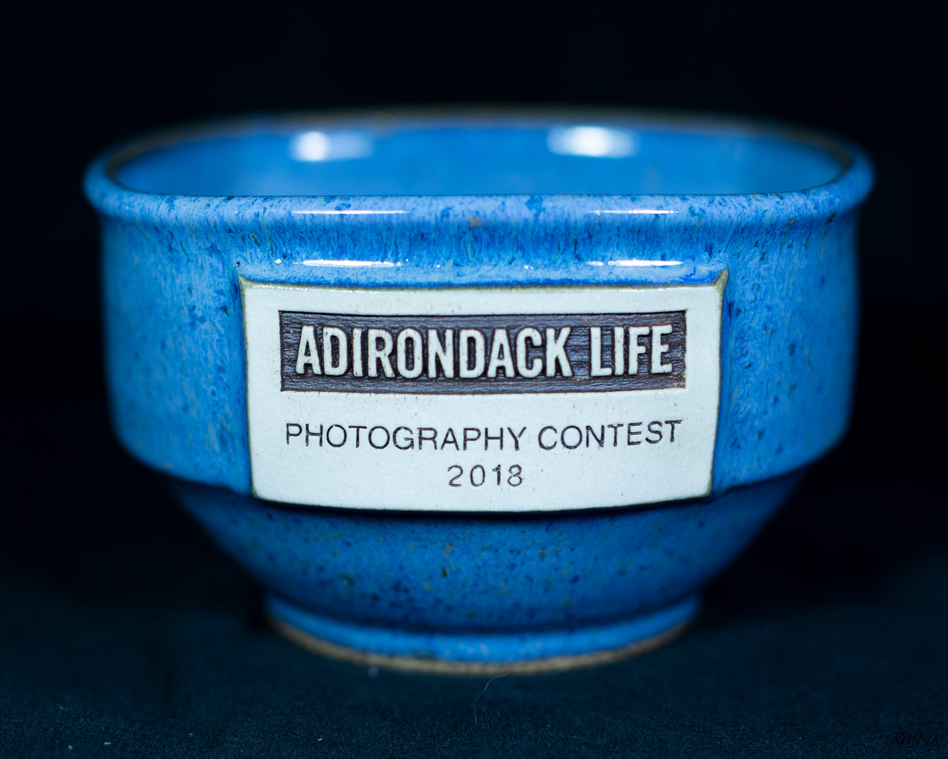 130/365 My prize for second place Adirondack Life Magazine photo