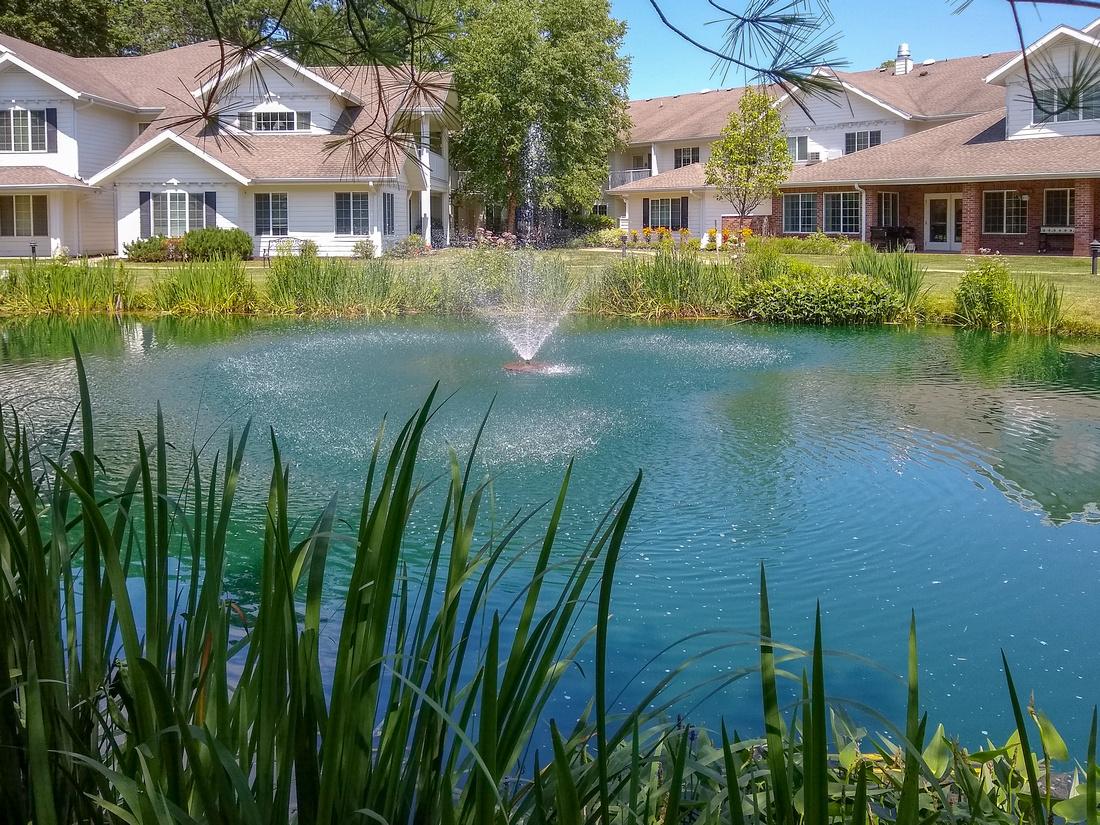 207/365 Moms swan pond