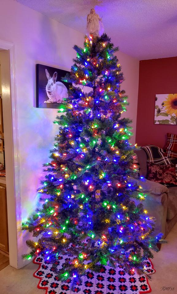 351 365 Beginning To Look Alot Like Christmas
